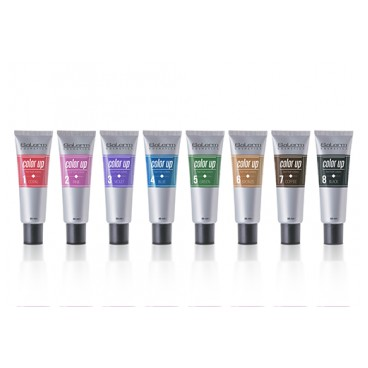 Color Up Salerm 55ml